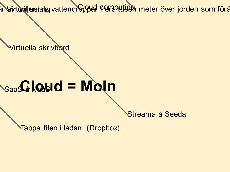 Cloud = Moln Består av miljontals vattendroppar flera tusen meter över jorden som förändras hela tiden. Virtualisering Cloud computing Virtuella skriv