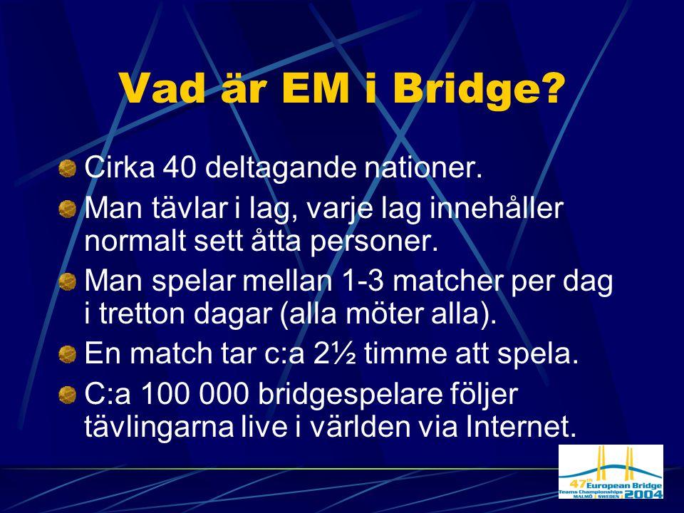 Malmö blir speciellt.Europamästerskapen kommer till Sverige och Malmö.