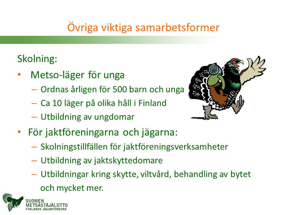 Skolning: • Metso-läger för unga – Ordnas årligen för 500 barn och unga – Ca 10 läger på olika håll i Finland – Utbildning av ungdomar • För jaktfören