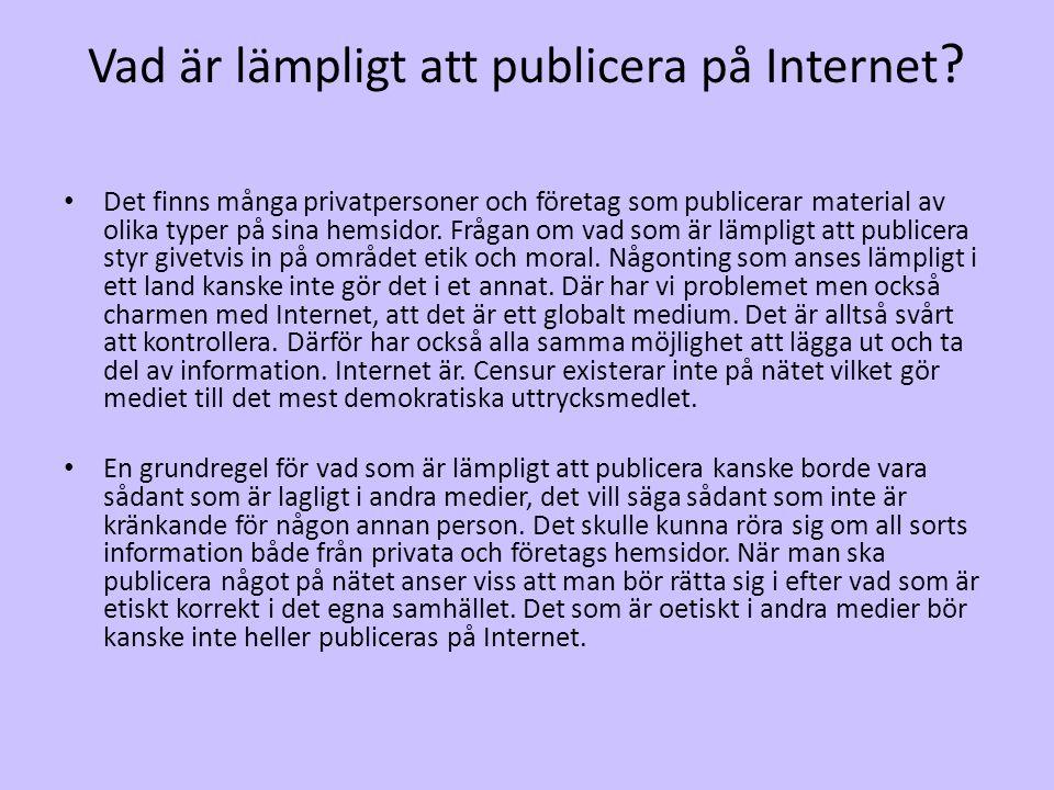 Vad är lämpligt att publicera på Internet ? • Det finns många privatpersoner och företag som publicerar material av olika typer på sina hemsidor. Fråg