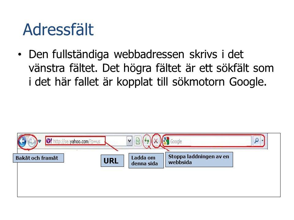 Adressfält • Den fullständiga webbadressen skrivs i det vänstra fältet. Det högra fältet är ett sökfält som i det här fallet är kopplat till sökmotorn