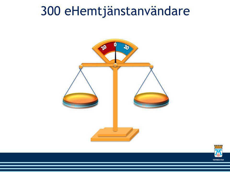 300 eHemtjänstanvändare