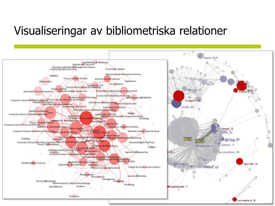 Visualiseringar av bibliometriska relationer
