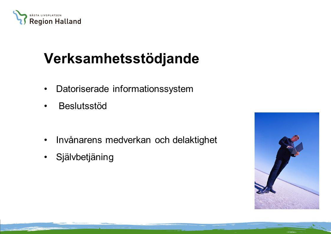 Verksamhetsstödjande •Datoriserade informationssystem • Beslutsstöd •Invånarens medverkan och delaktighet •Självbetjäning