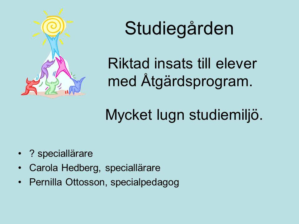 Studiegården Riktad insats till elever med Åtgärdsprogram. Mycket lugn studiemiljö. •? speciallärare •Carola Hedberg, speciallärare •Pernilla Ottosson