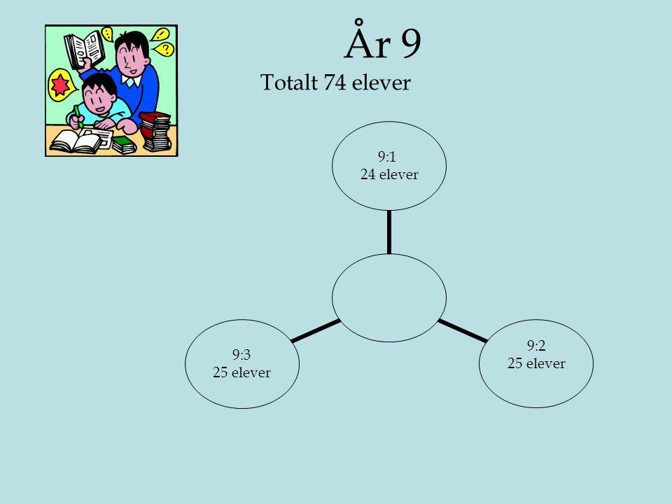 År 9 Totalt 74 elever 9:1 24 elever 9:2 25 elever 9:3 25 elever
