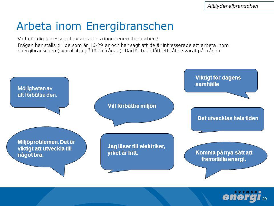 29 Arbeta inom Energibranschen Vad gör dig intresserad av att arbeta inom energibranschen.
