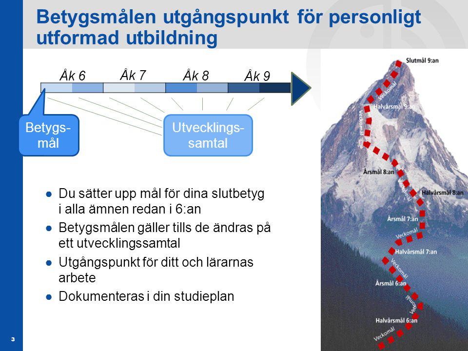 Elever som rekommenderar Grundskola Gymnasiet 66% 67% 2005201120102009200820072006 Värden t.o.m.