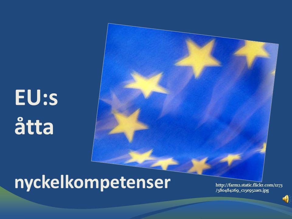 EU:s åtta nyckelkompetenser http://farm2.static.flickr.com/1273 /580484269_c15e952ae1.jpg