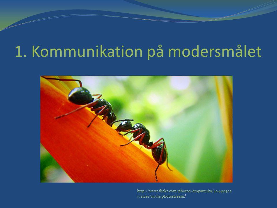 1. Kommunikation på modersmålet http://www.flickr.com/photos/ampamuka/404491502 7/sizes/m/in/photostream /
