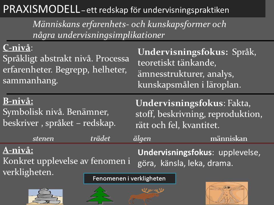 24 PRAXISMODELL – ett redskap för undervisningspraktiken Människans erfarenhets- och kunskapsformer och några undervisningsimplikationer C-nivå: Språk