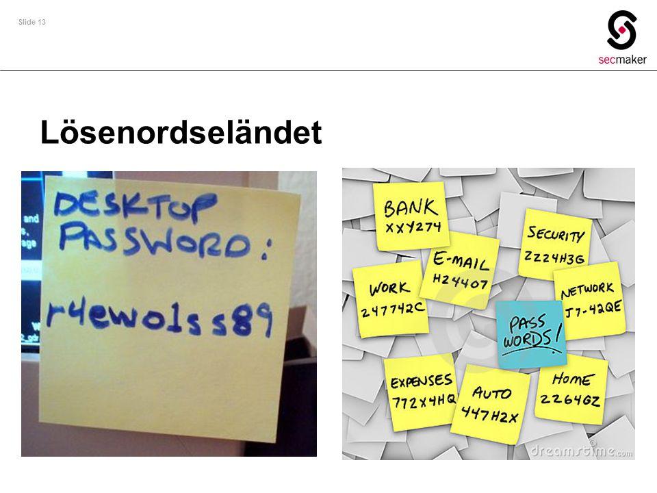 Slide 13 Lösenordseländet