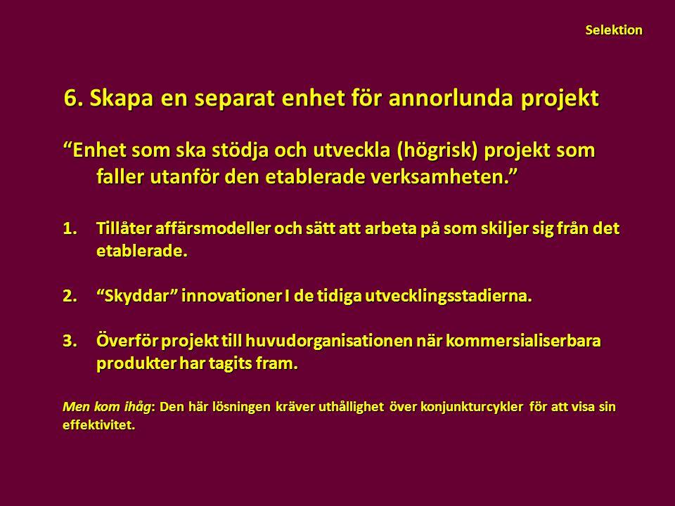 """6. Skapa en separat enhet för annorlunda projekt """"Enhet som ska stödja och utveckla (högrisk) projekt som faller utanför den etablerade verksamheten."""""""