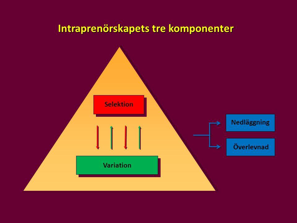 Variation Selektion Överlevnad Nedläggning Intraprenörskapets tre komponenter