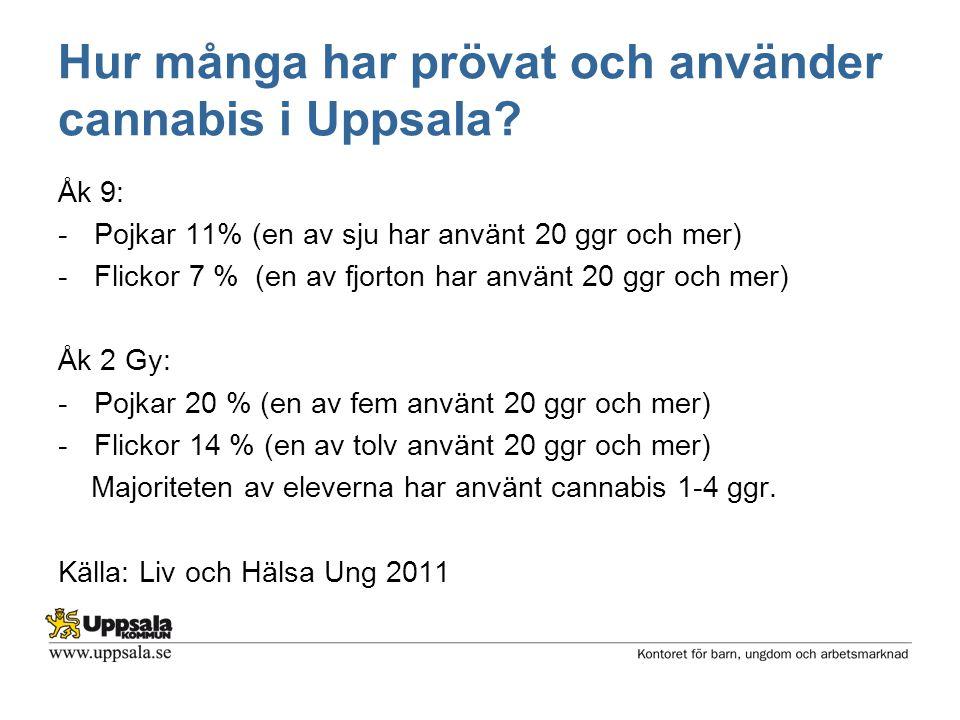 Hur många har prövat och använder cannabis i Uppsala? Åk 9: -Pojkar 11% (en av sju har använt 20 ggr och mer) -Flickor 7 % (en av fjorton har använt 2
