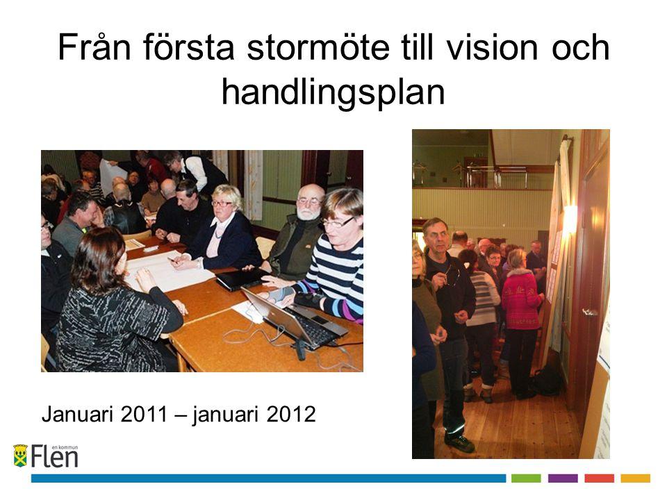 Från första stormöte till vision och handlingsplan Januari 2011 – januari 2012