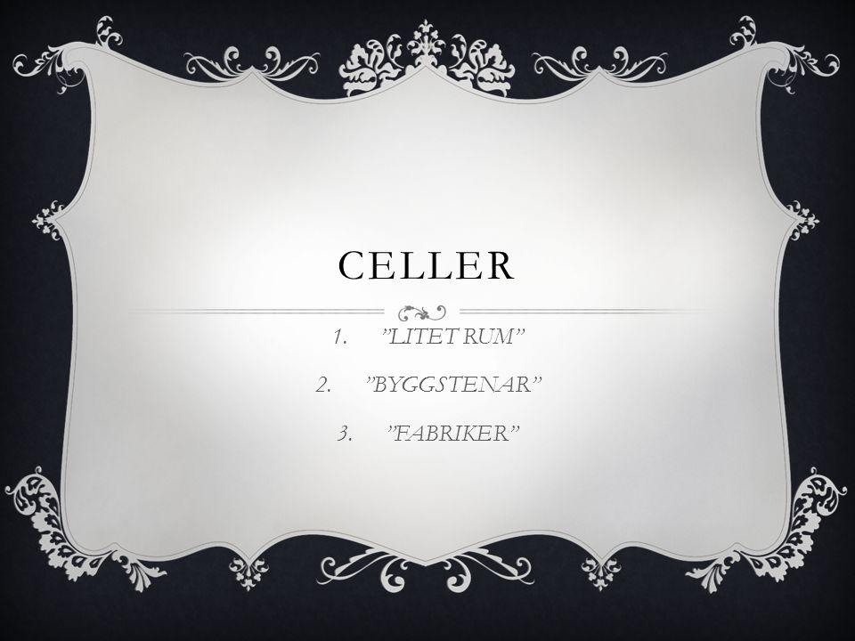 """CELLER 1.""""LITET RUM"""" 2.""""BYGGSTENAR"""" 3.""""FABRIKER"""""""
