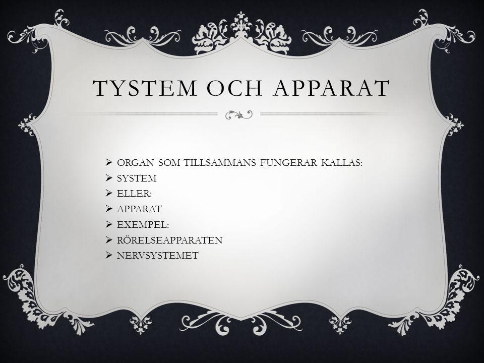 TYSTEM OCH APPARAT  ORGAN SOM TILLSAMMANS FUNGERAR KALLAS:  SYSTEM  ELLER:  APPARAT  EXEMPEL:  RÖRELSEAPPARATEN  NERVSYSTEMET