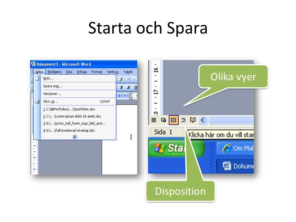 Starta och Spara Olika vyer Disposition
