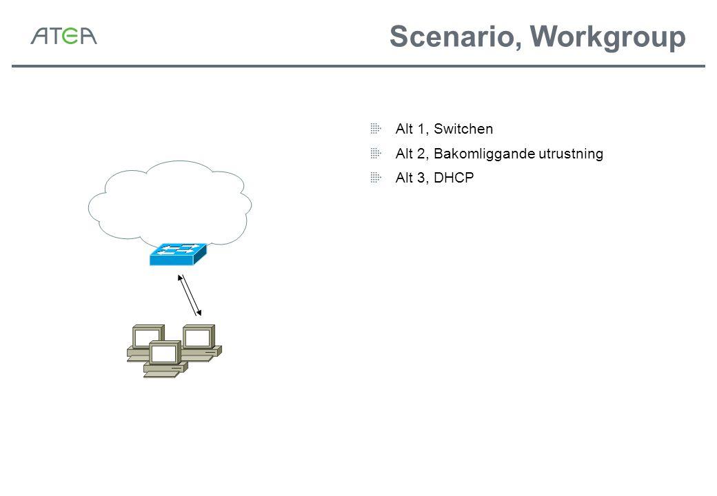 Scenario, Workgroup Alt 1, Switchen Alt 2, Bakomliggande utrustning Alt 3, DHCP