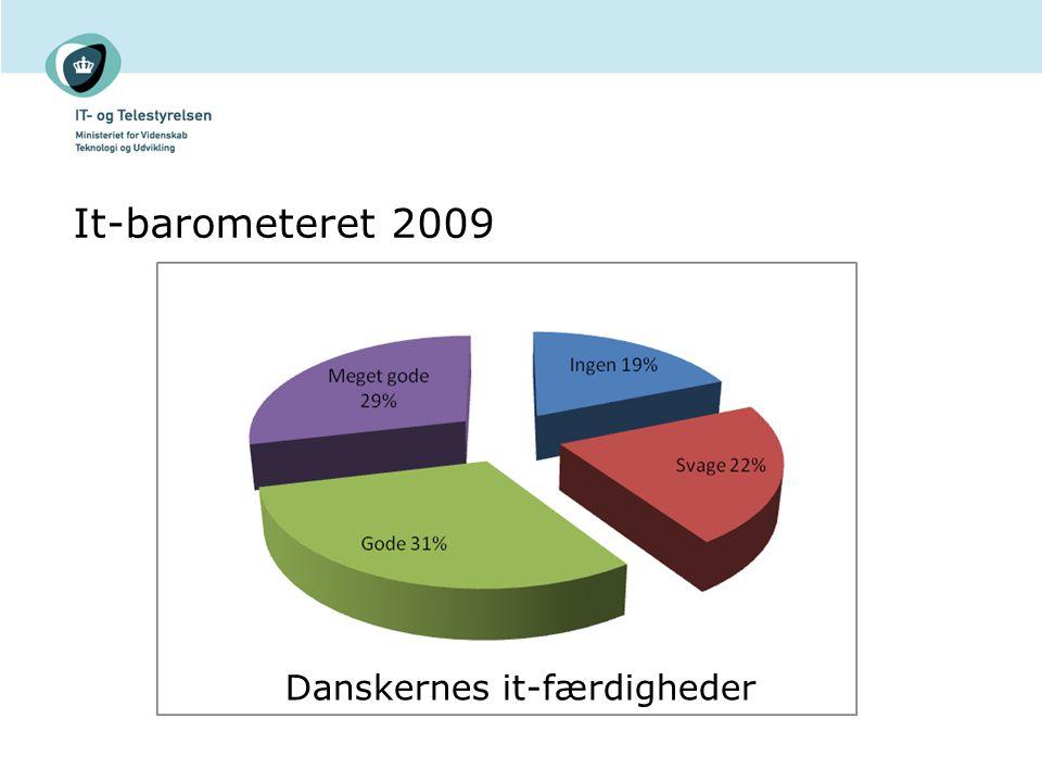 It-barometeret 2009 Danskernes it-færdigheder