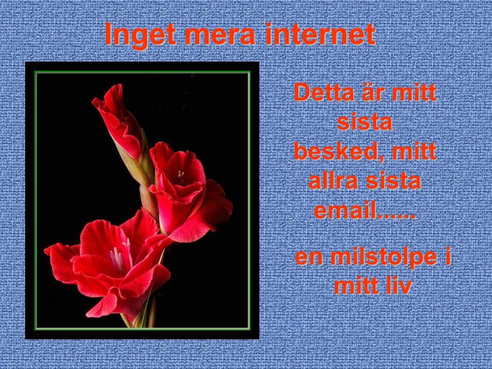 Inget mera internet Detta är mitt sista besked, mitt allra sista email......