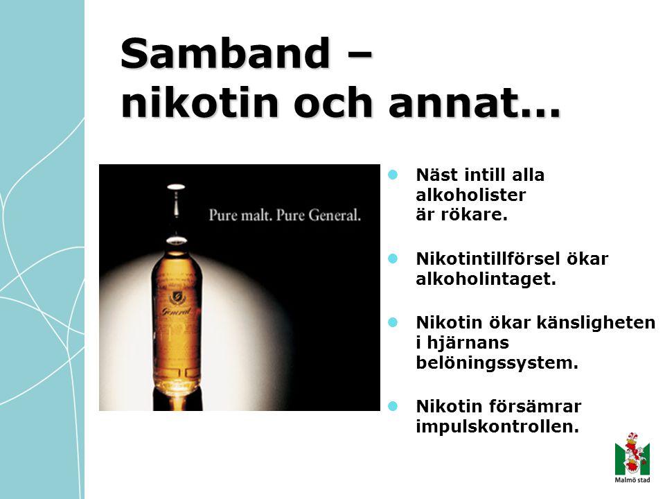 Samband – nikotin och annat...  Näst intill alla alkoholister är rökare.  Nikotintillförsel ökar alkoholintaget.  Nikotin ökar känsligheten i hjärn
