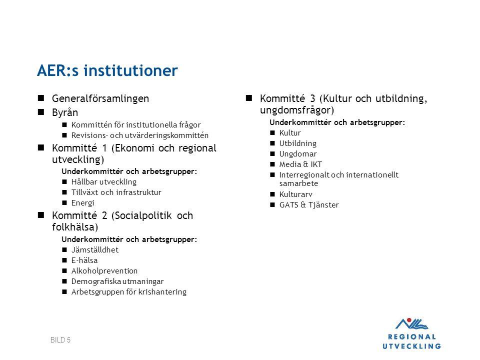 BILD 5 AER:s institutioner  Generalförsamlingen  Byrån  Kommittén för institutionella frågor  Revisions- och utvärderingskommittén  Kommitté 1 (E