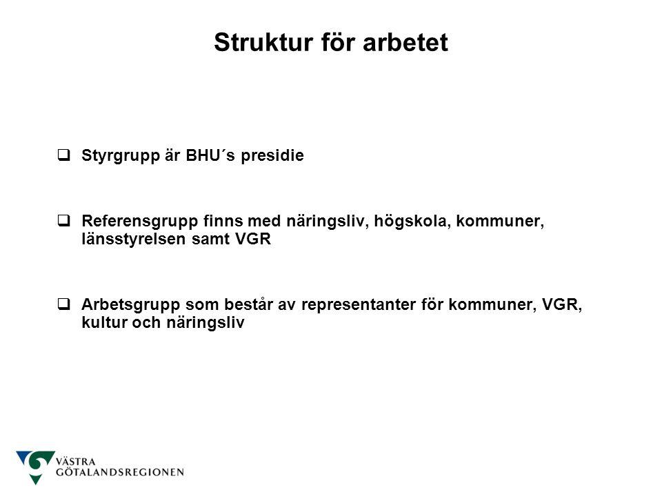 Struktur för arbetet  Styrgrupp är BHU´s presidie  Referensgrupp finns med näringsliv, högskola, kommuner, länsstyrelsen samt VGR  Arbetsgrupp som