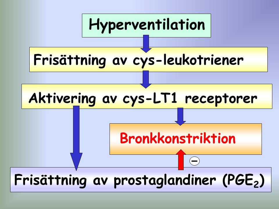 Hyperventilation Frisättning av cys-leukotriener Aktivering av cys-LT1 receptorer Frisättning av prostaglandiner (PGE 2 ) Bronkkonstriktion