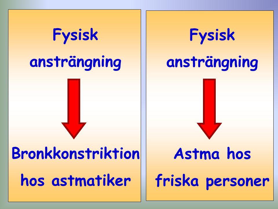 Fysisk ansträngning Bronkkonstriktion hos astmatiker Fysisk ansträngning Astma hos friska personer