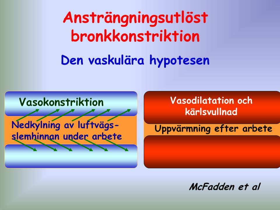 Vasokonstriktion Nedkylning av luftvägs- slemhinnan under arbete McFadden et al Uppvärmning efter arbete Vasodilatation och kärlsvullnad Ansträngnings