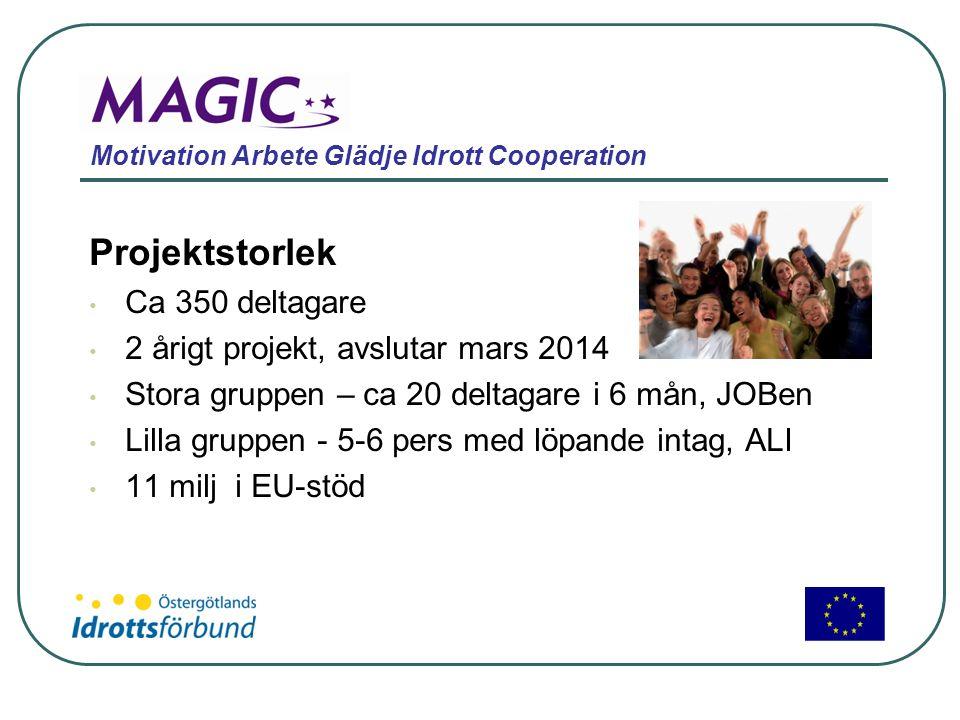 Motivation Arbete Glädje Idrott Cooperation Projektstorlek • Ca 350 deltagare • 2 årigt projekt, avslutar mars 2014 • Stora gruppen – ca 20 deltagare