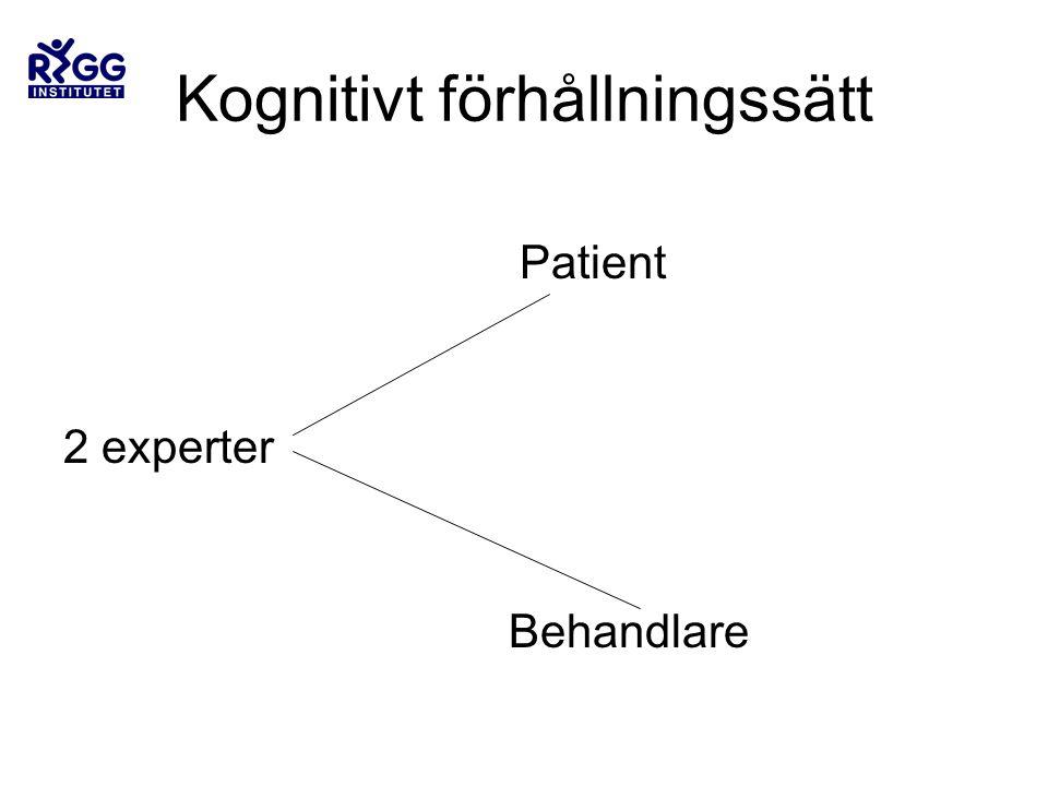 Kognitivt förhållningssätt Patient 2 experter Behandlare