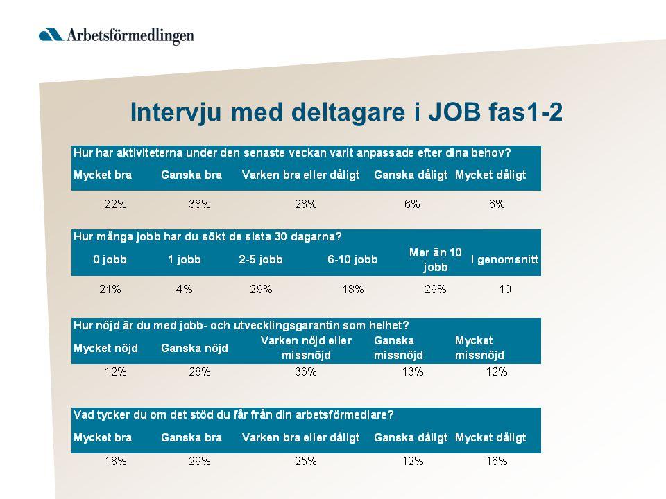Intervju med deltagare i JOB fas1-2