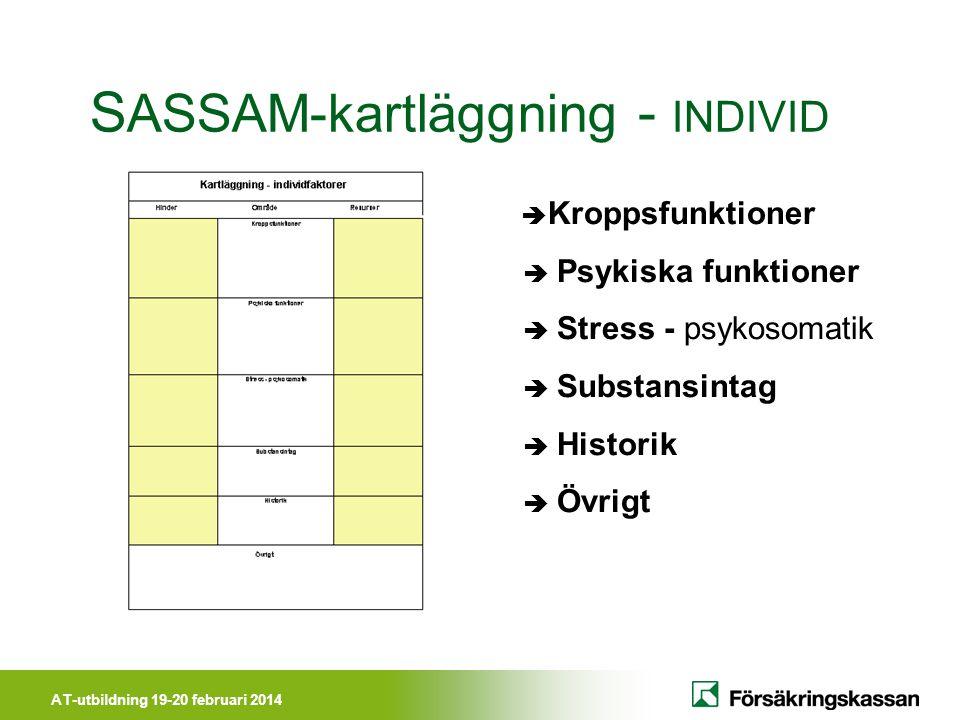 AT-utbildning 19-20 februari 2014 S ASSAM-kartläggning - INDIVID  Kroppsfunktioner  Psykiska funktioner  Stress - psykosomatik  Substansintag  Hi
