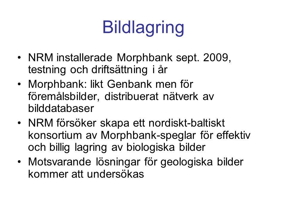 Bildlagring •NRM installerade Morphbank sept. 2009, testning och driftsättning i år •Morphbank: likt Genbank men för föremålsbilder, distribuerat nätv