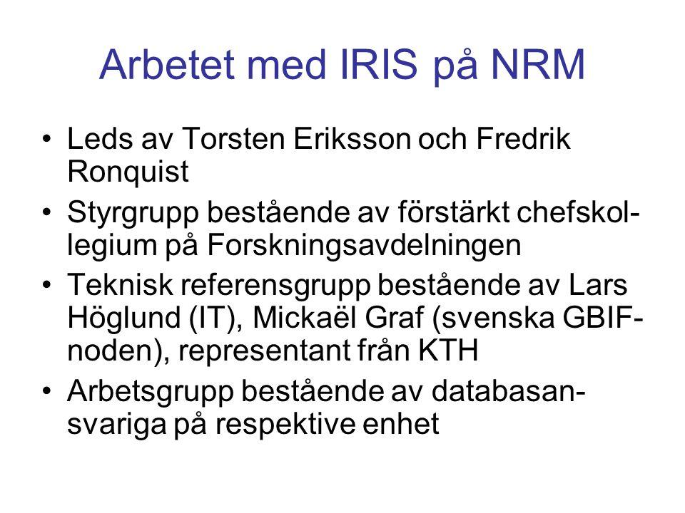Arbetet med IRIS på NRM •Leds av Torsten Eriksson och Fredrik Ronquist •Styrgrupp bestående av förstärkt chefskol- legium på Forskningsavdelningen •Te