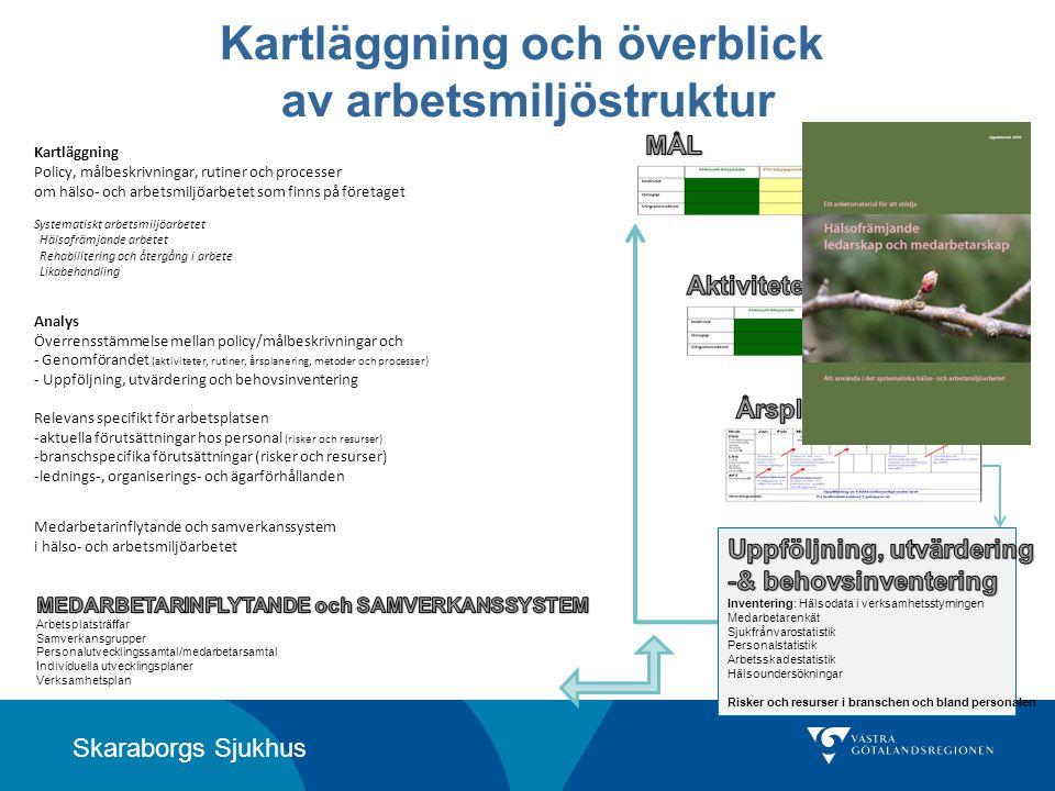 Skaraborgs Sjukhus Kartläggning och överblick av arbetsmiljöstruktur Kartläggning Policy, målbeskrivningar, rutiner och processer om hälso- och arbets