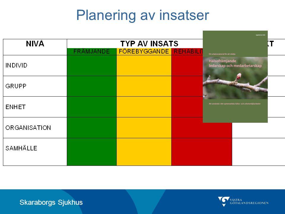 Skaraborgs Sjukhus Planering av insatser