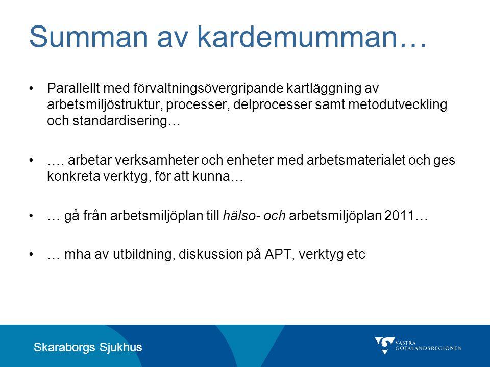 Skaraborgs Sjukhus Summan av kardemumman… •Parallellt med förvaltningsövergripande kartläggning av arbetsmiljöstruktur, processer, delprocesser samt m
