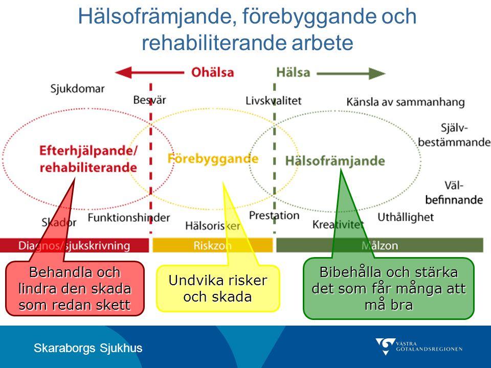 Skaraborgs Sjukhus Hälsofrämjande, förebyggande och rehabiliterande arbete Behandla och lindra den skada som redan skett Undvika risker och skada Bibe