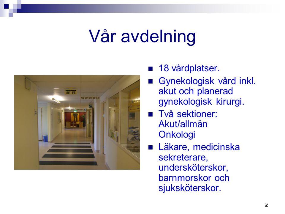 2 Vår avdelning  18 vårdplatser.  Gynekologisk vård inkl. akut och planerad gynekologisk kirurgi.  Två sektioner: Akut/allmän Onkologi  Läkare, me