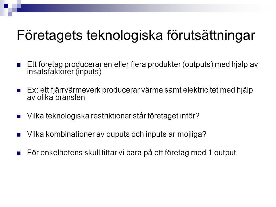 Företagets teknologiska förutsättningar  Ett företag producerar en eller flera produkter (outputs) med hjälp av insatsfaktorer (inputs)  Ex: ett fjä