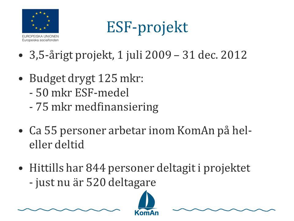 ESF-projekt •3,5-årigt projekt, 1 juli 2009 – 31 dec. 2012 •Budget drygt 125 mkr: - 50 mkr ESF-medel - 75 mkr medfinansiering •Ca 55 personer arbetar