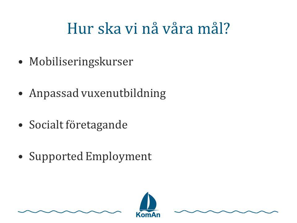 Hur ska vi nå våra mål? •Mobiliseringskurser •Anpassad vuxenutbildning •Socialt företagande •Supported Employment