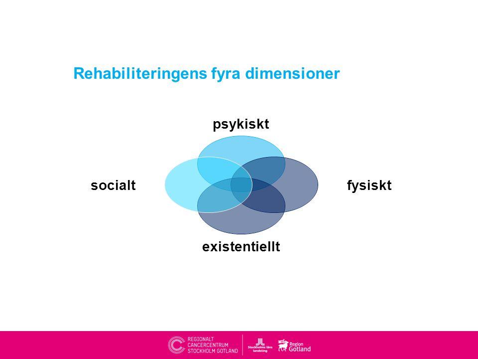 Rehabiliteringens fyra dimensioner psykiskt fysiskt existentiellt socialt