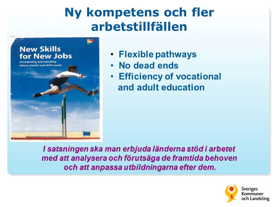 • Flexible pathways • No dead ends • Efficiency of vocational and adult education I satsningen ska man erbjuda länderna stöd i arbetet med att analysera och förutsäga de framtida behoven med att analysera och förutsäga de framtida behoven och att anpassa utbildningarna efter dem.