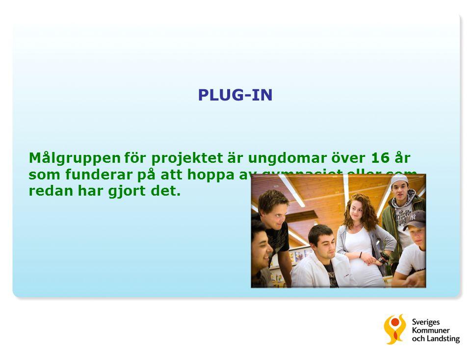 PLUG-IN Målgruppen för projektet är ungdomar över 16 år som funderar på att hoppa av gymnasiet eller som redan har gjort det.