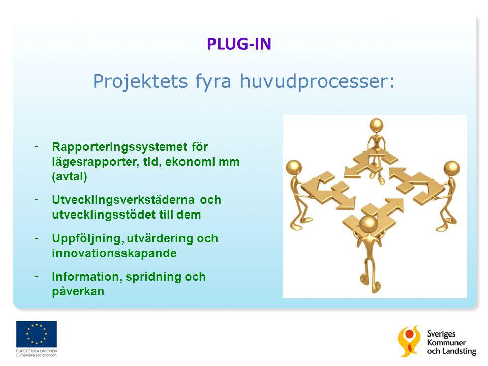 Projektets fyra huvudprocesser: - Rapporteringssystemet för lägesrapporter, tid, ekonomi mm (avtal) - Utvecklingsverkstäderna och utvecklingsstödet till dem - Uppföljning, utvärdering och innovationsskapande - Information, spridning och påverkan PLUG-IN